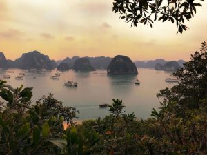 Cozy bay Cruise Itinerary overnight tour in Halong Bay