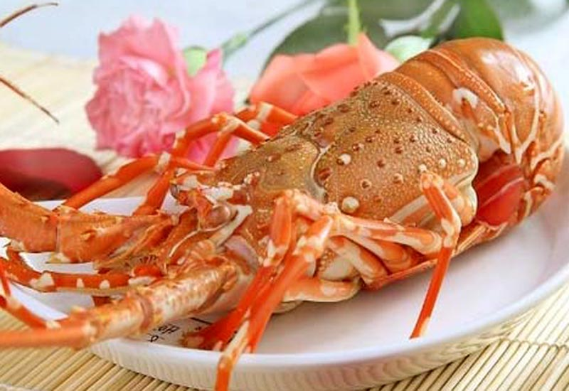 Lobsters Halong Bay, tom hum halong, best food to eat in Halong Bay