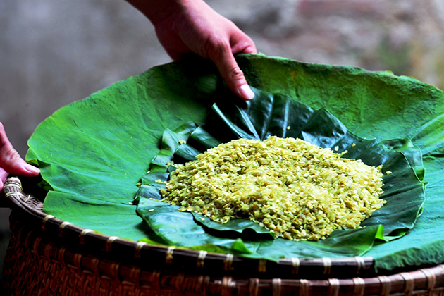 Vong-Green-Young-Sticky-Rice-Village-5