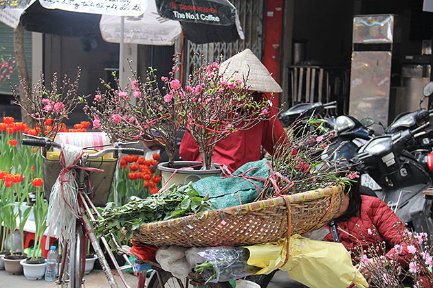 flower market in vietnam, tet holiday in vietnam, vietnam travel in traditional holiday