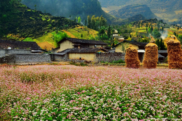 Best time to visit Ha giang in Vietnam