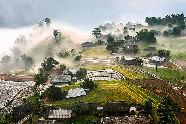 rice-terrace-hoang-su-phi-vietnam-cozy-vietnam-tours-ha-giang-tours
