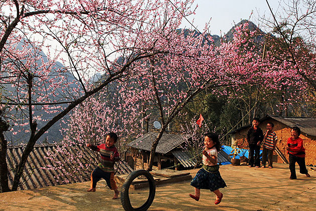 tet holiday in sapa vietnam