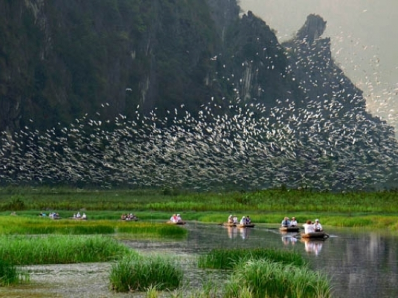 Van Long Nature Reserve in Ninh Binh